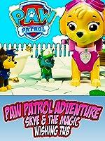PAW PATROL ADVENTURE - Skye & The Magic Wishing Tub