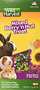 Wild Harvest: Pack of 2, Mixed Berry 'N Nut Treat for Guinea Pigs, Hamsters, Gerbils and Adult Rabbits, (22 oz Total)