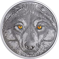 WOLF In The Eyes Of The Glow In The Dark Silver Coin 15$ Canada 2017