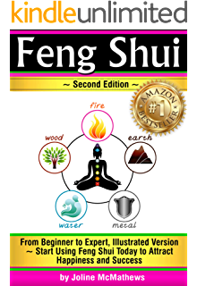 feng shui from beginner to expert illustrated version start using feng shui today amber collins feng shui