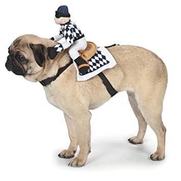 Amazon.com   Zack   Zoey Show Jockey Saddle Dog Costume c3cc7a91f1f5