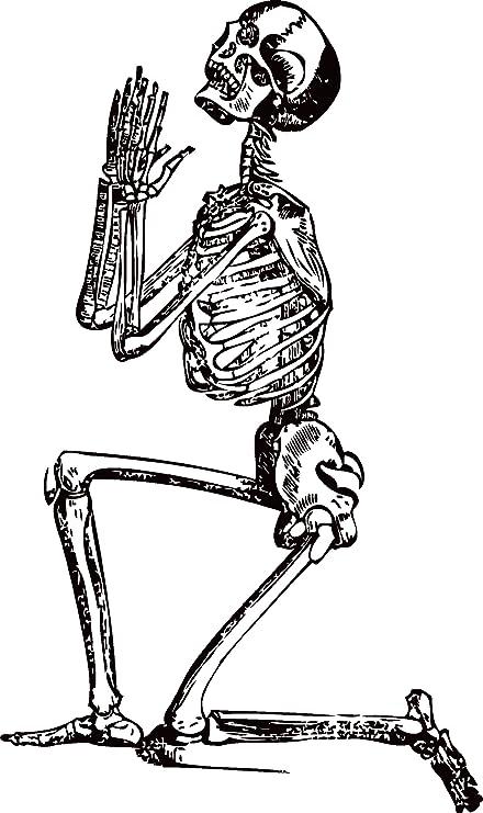 Amazon Human Skeleton Praying Wall Decal Sticker 1 Decal