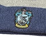 Harry Potter Hogwarts Houses Knit Ravenclaw Scarf & Pom Beanie Set