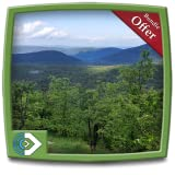 Green Rainfall HD - Sit and Enjoy Rainy Forest on your Fire TV & Kindle Devices