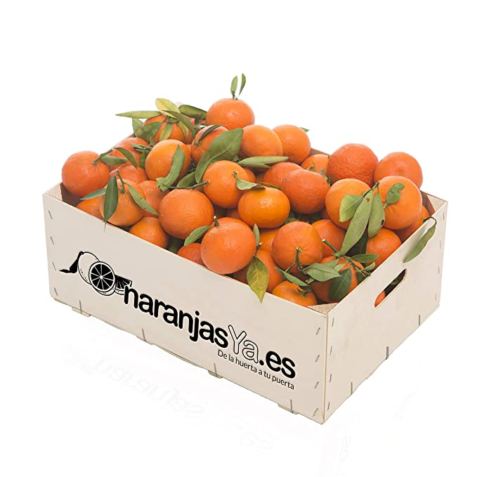 Mandarinas de Valencia 10kg - 100% frescas
