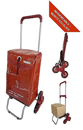 Bo Time BTBC-SP-11-PS - Carro de la Compra Impermeable y Escalera con 6 Ruedas y asa telescópica, Capacidad 44 L: Amazon.es: Jardín