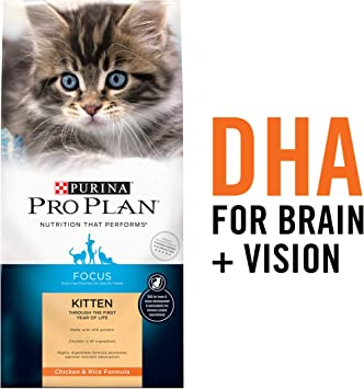 Amazon.com: Purina Pro Plan Comida seca para gatos: Mascotas