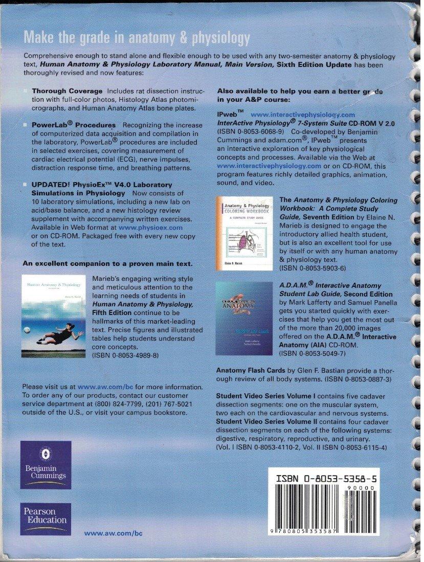 Human Anatomy & Physiology Laboratory Manual Main Version textbook ...