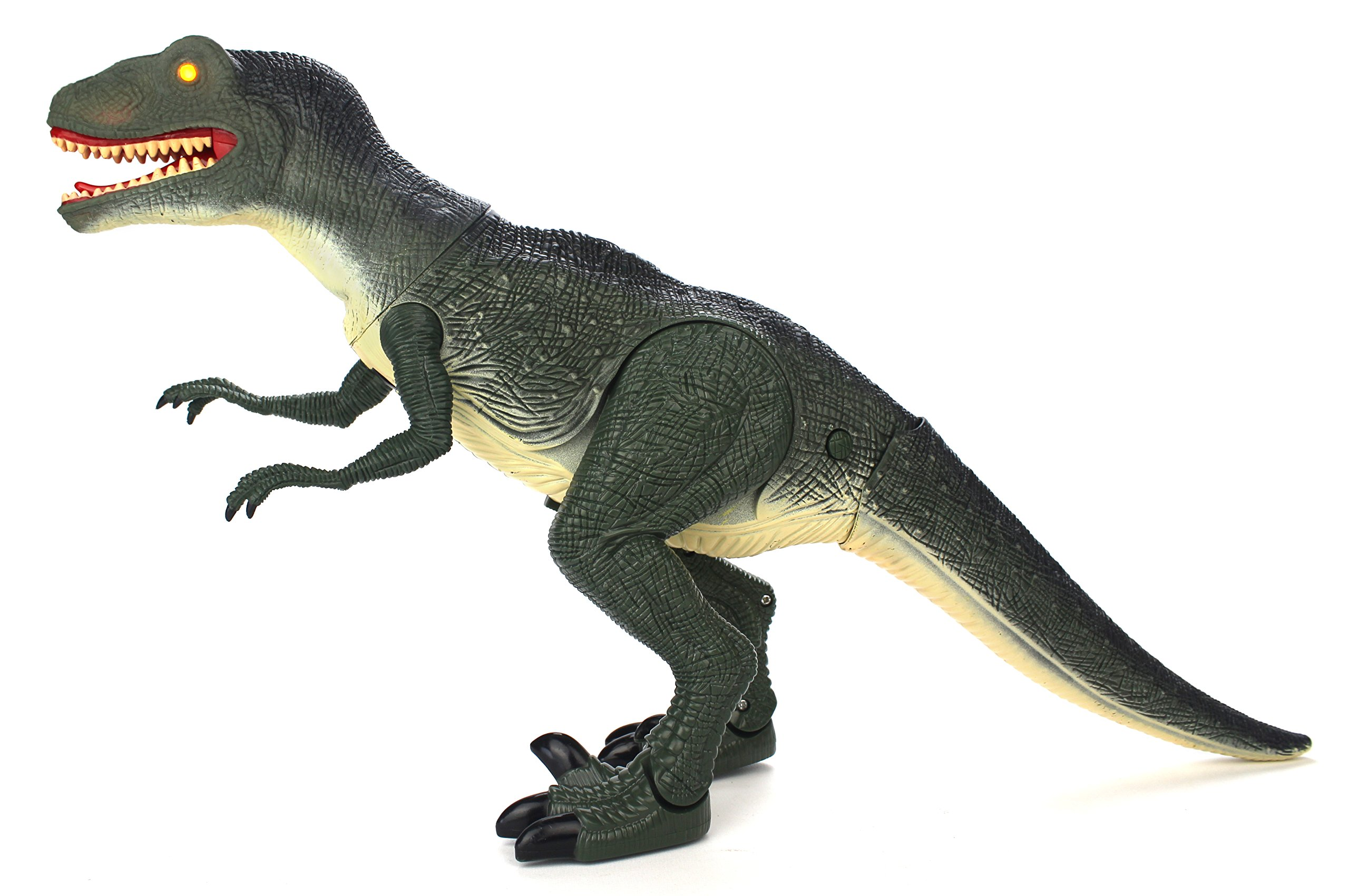 Dinosaur Planet Raptor Remote Controlled RC Battery Operated Toy Velociraptor Figure w/Shaking Head, Walking Movement, Light Up Eyes & Sounds by Velocity Toys (Image #3)