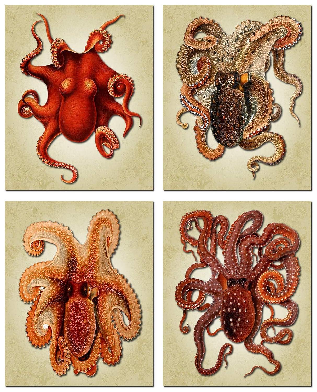 Octopus Art - Vintage Water Color Octopus Wall Art Prints - Nautical Bathroom Decor - Steampunk Art Octopus Poster Gift - 8 x10 Unframed…