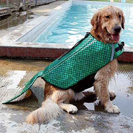 Amazon Com Chuchu Pet Dog Life Vest Jacket Cosplay Shark Golden