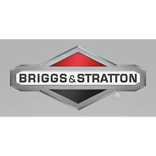 Briggs & Stratton # CE8020 SMALL ENG TEXT BK