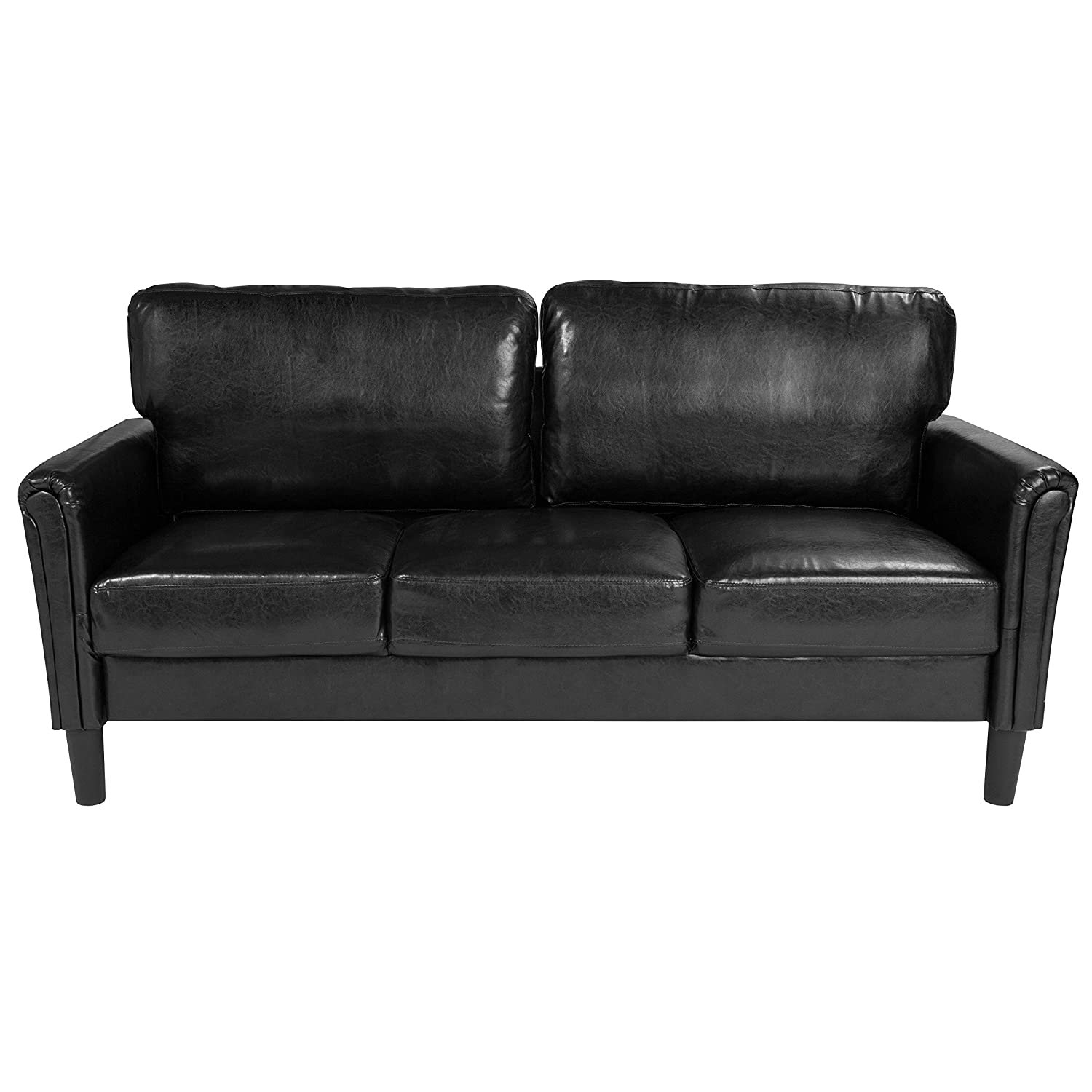 Flash Furniture Bari Upholstered Sofa in Black Leather