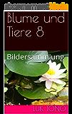 Blume und Tiere 8: Bildersammlung (German Edition)