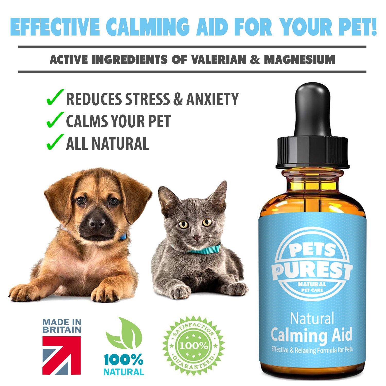 Pets Purest Suplemento 100% Natural Calming Aid para perros, gatos y mascotas. Reduce la ansiedad y el estrés en sus mascotas (50 ml): Amazon.es: Productos ...