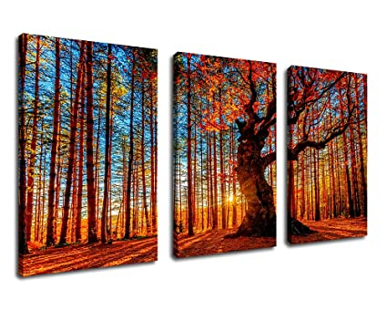 "a45d2f1a6 Canvas Wall Art Red Forest Woods Sunset Nature Picture - 30"" x  60"" 3"