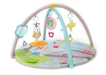 c8187fa67314 Amazon.com   Taf Toys Baby Play Gym