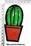 Cactus Heat Resistant in The Desert Cartoon Chidren Kids Embroidren Iron Patch/Logo Sew On Patch Clothes Bag T-Shirt Jeans Biker Badge Applique