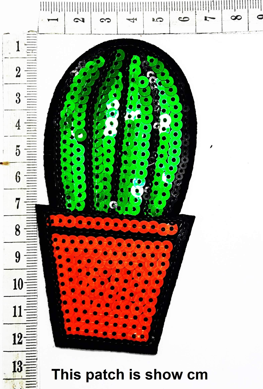 Cactus Heat Resistant in The Desert Cartoon Chidren