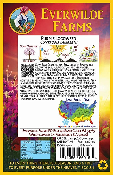 1 Oz Purple Prairie Clover Wildflower Seeds Everwilde Farms Mylar Seed Packet