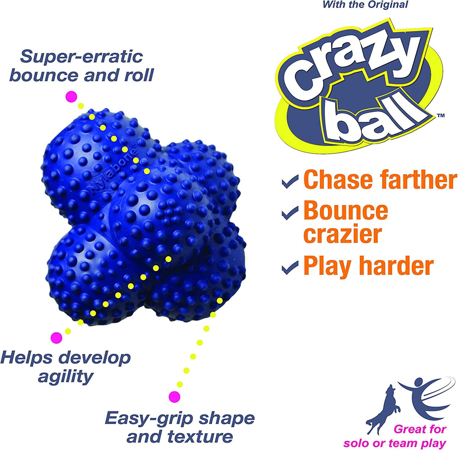 Crazy Ball Large Nylabone Power Play Ball for Dogs