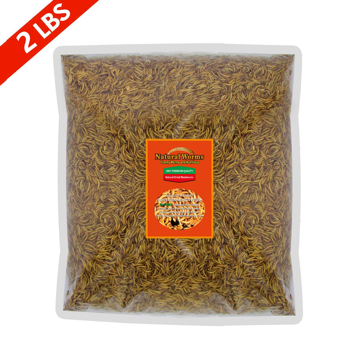 FROLIC WINGS 2 lbs Mealworms, 100 Percent Non-GMO Dried Delicious Mealworms Treats for Chickens, Wild Birds, Fish, Reptiles by FROLIC WINGS