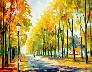 5D DIY Diamond Painting Kits for Adults, with Round Full Drill Gems Art Crafts Landscape for Home Wall Decoration.(12x16inch/30x40cm)…