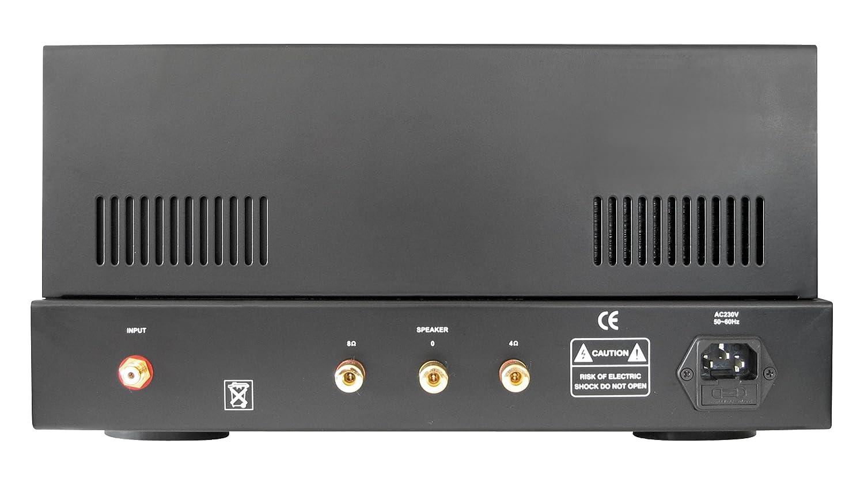 Dynavox VR-80E - Amplificador a válvulas mono, color negro (importado): Amazon.es: Instrumentos musicales