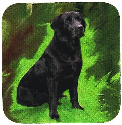 Compra 3drose Cst 3892 Perros Labrador Golden Retriever Labrador