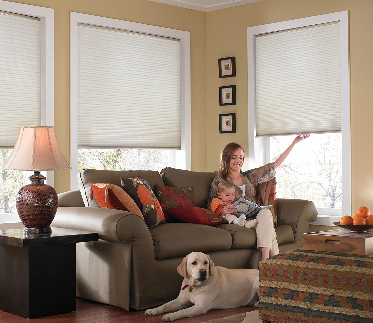Windowsandgarden Custom Cordless Single Cell Shades, 24W x 37H, Cool White, Light Filtering 21-72 Inches Wide