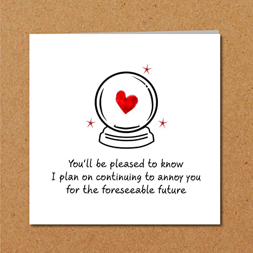 Funny Birthday Anniversary Valentines Day Card For Husband Boyfriend Wife Girlfriend