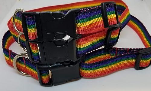 Rainbow Dog Collar 1 Star Dog Collar