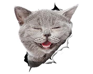 Winston & Bear Pegatinas de gato 3D - Pack 2 - risa gato gris pegatina para