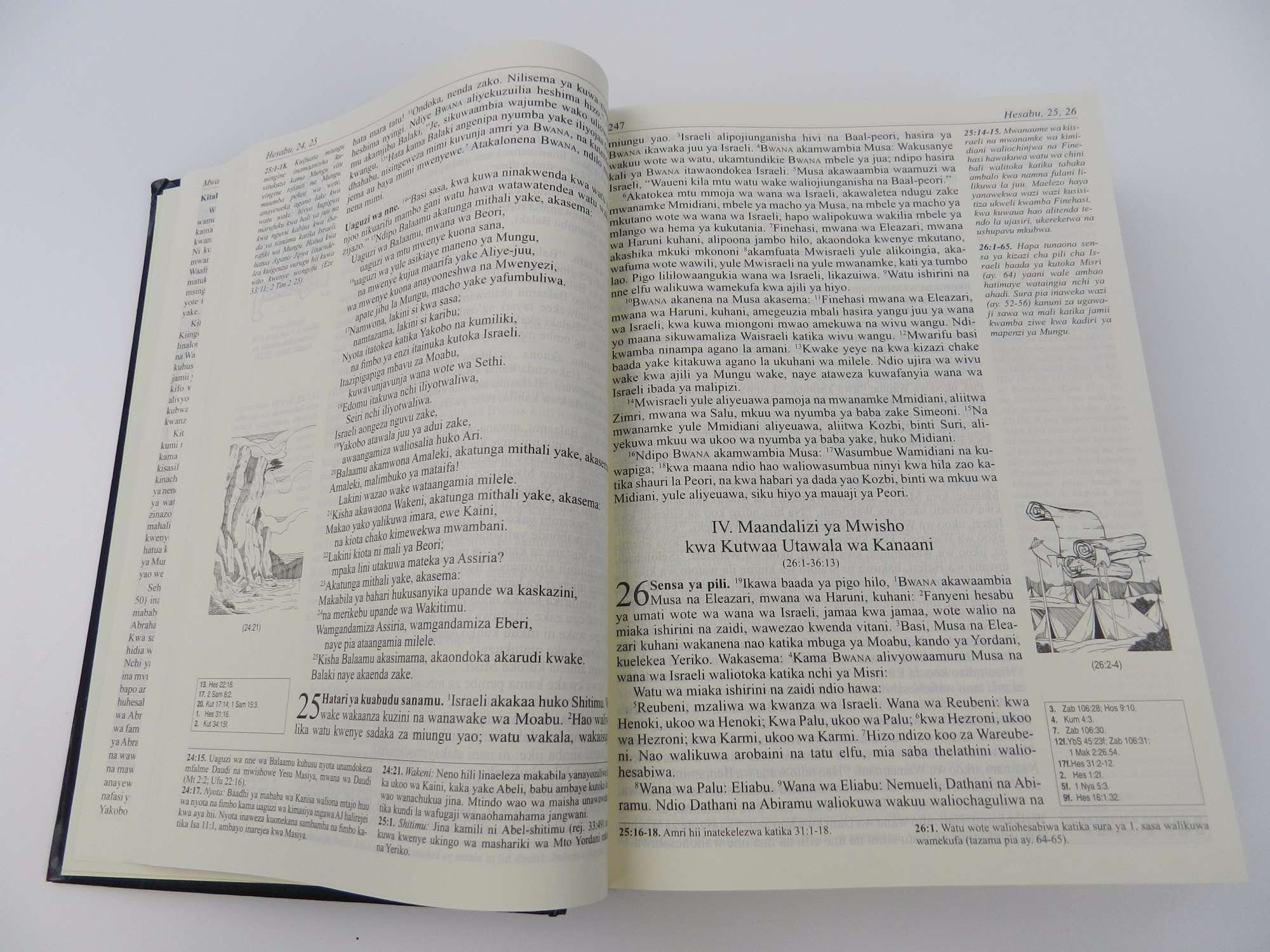 The African Bible Swahili Language With Study Notes And Many Illustrations Dark Green Hardcover Biblia Ya Kiafrika Catholic Community Bible Bible Society 0700535069588 Amazon Com Books