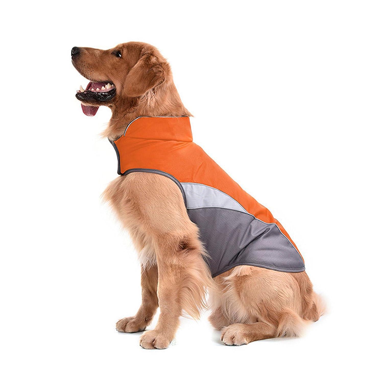 SILD Pet Dog vêtements imperméables Chien Gilet Coupe-Vent empêche la Pluie en Nylon avec Sport Chien Veste réfléchissante Garder au Chaud pour Animaux de Compagnie
