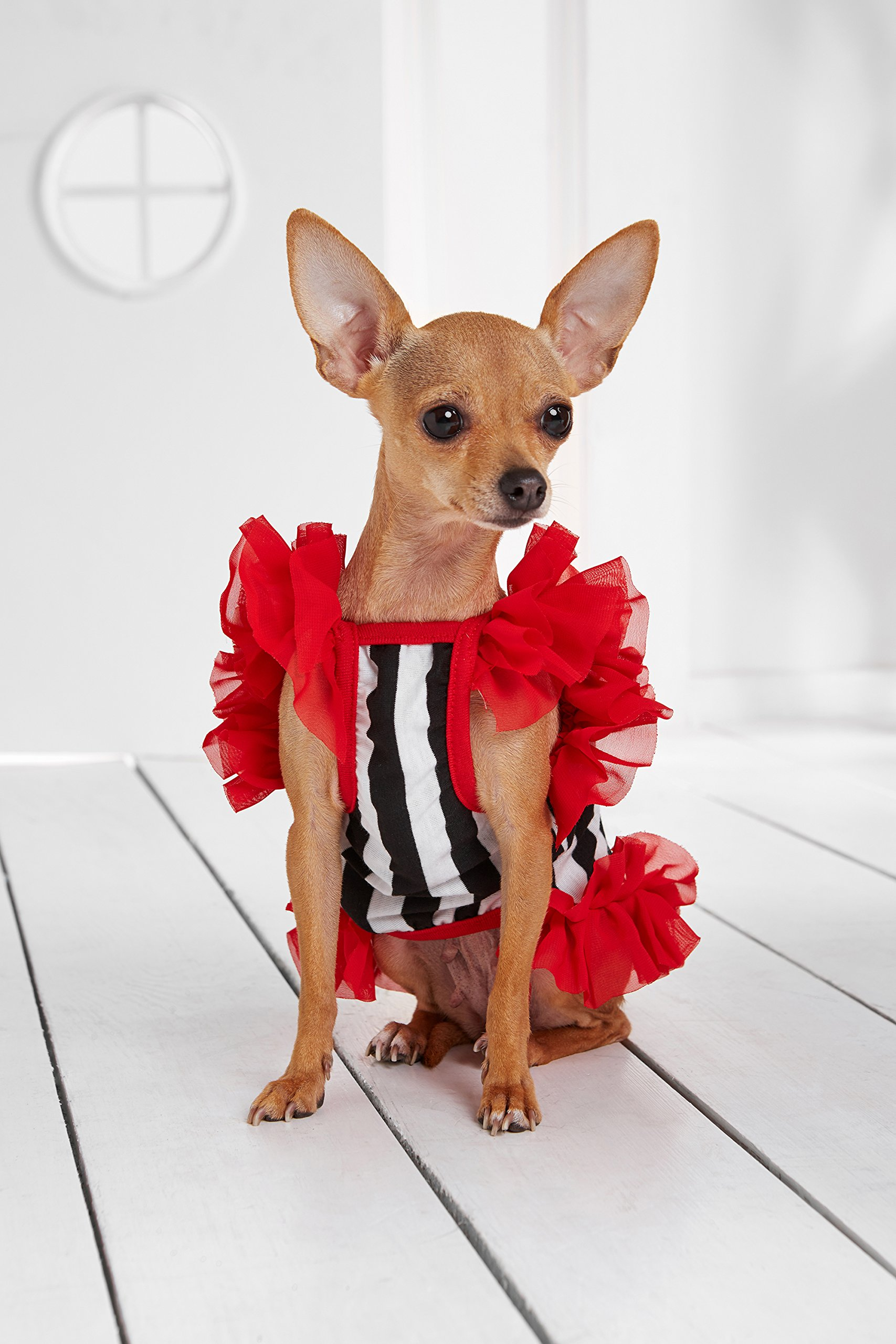 """Small Dog Striped Dress With Ruffles Satin Bow Chain Dogs Cotton Summer Clothes (Toy Plus: 10"""" / 5-9 lbs, Red, Black, White) by Nothing But Love Pets (Image #3)"""