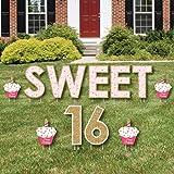 Big Dot Of Happiness Sweet 16