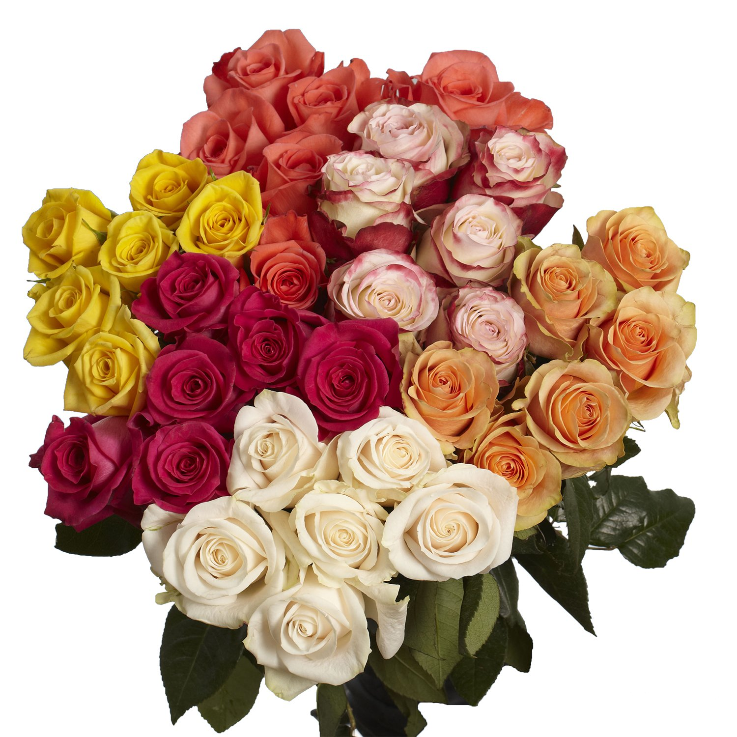 Globalrose 100 Fresh Cut Red Roses Beautiful Flowers Perfect For