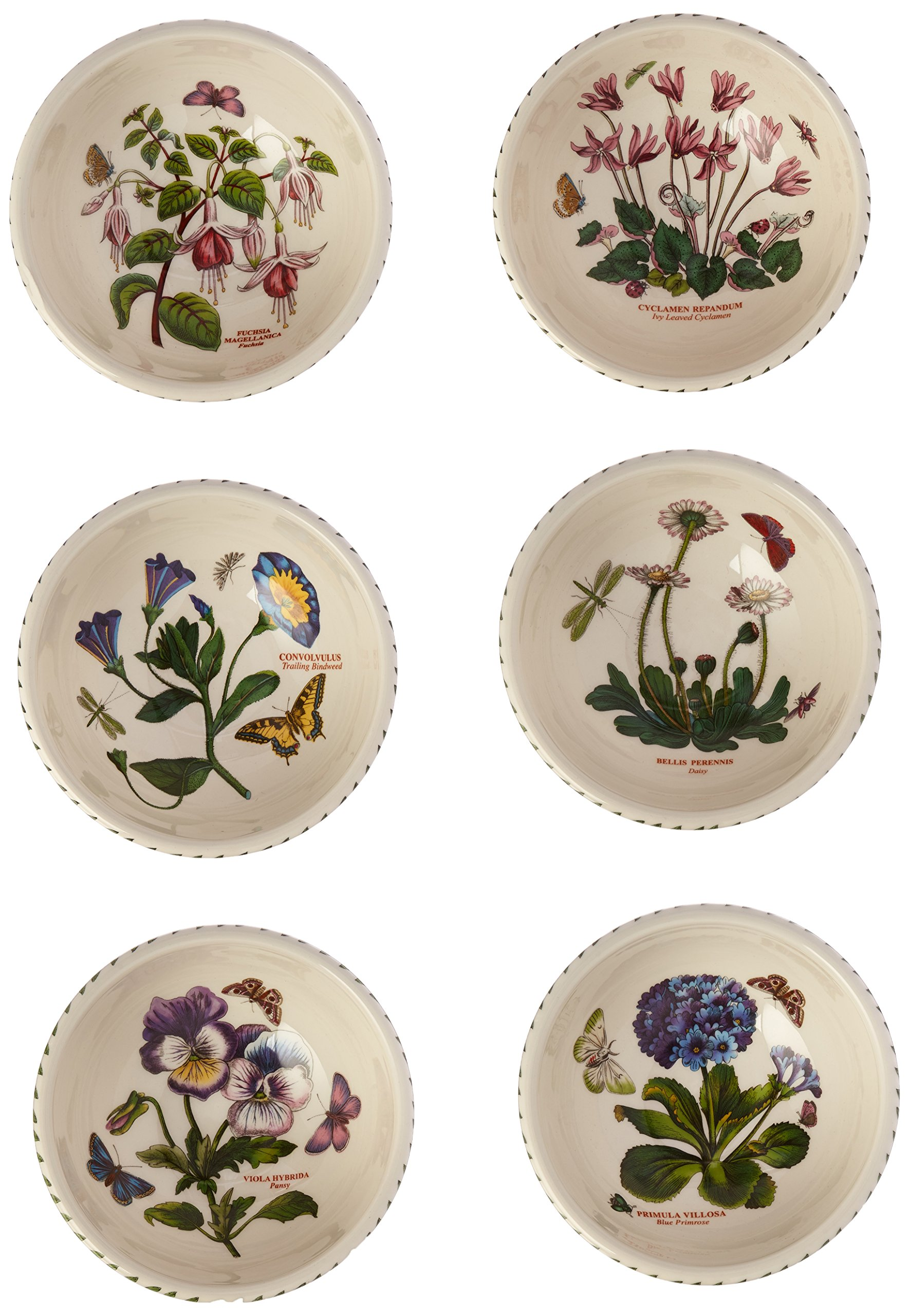 Portmeirion Botanic Garden Individual Fruit Salad Bowls, Set of 6 Assorted Motifs by Portmeirion