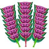 M & M Products Online 24-Pack Watermelon Paper Fans