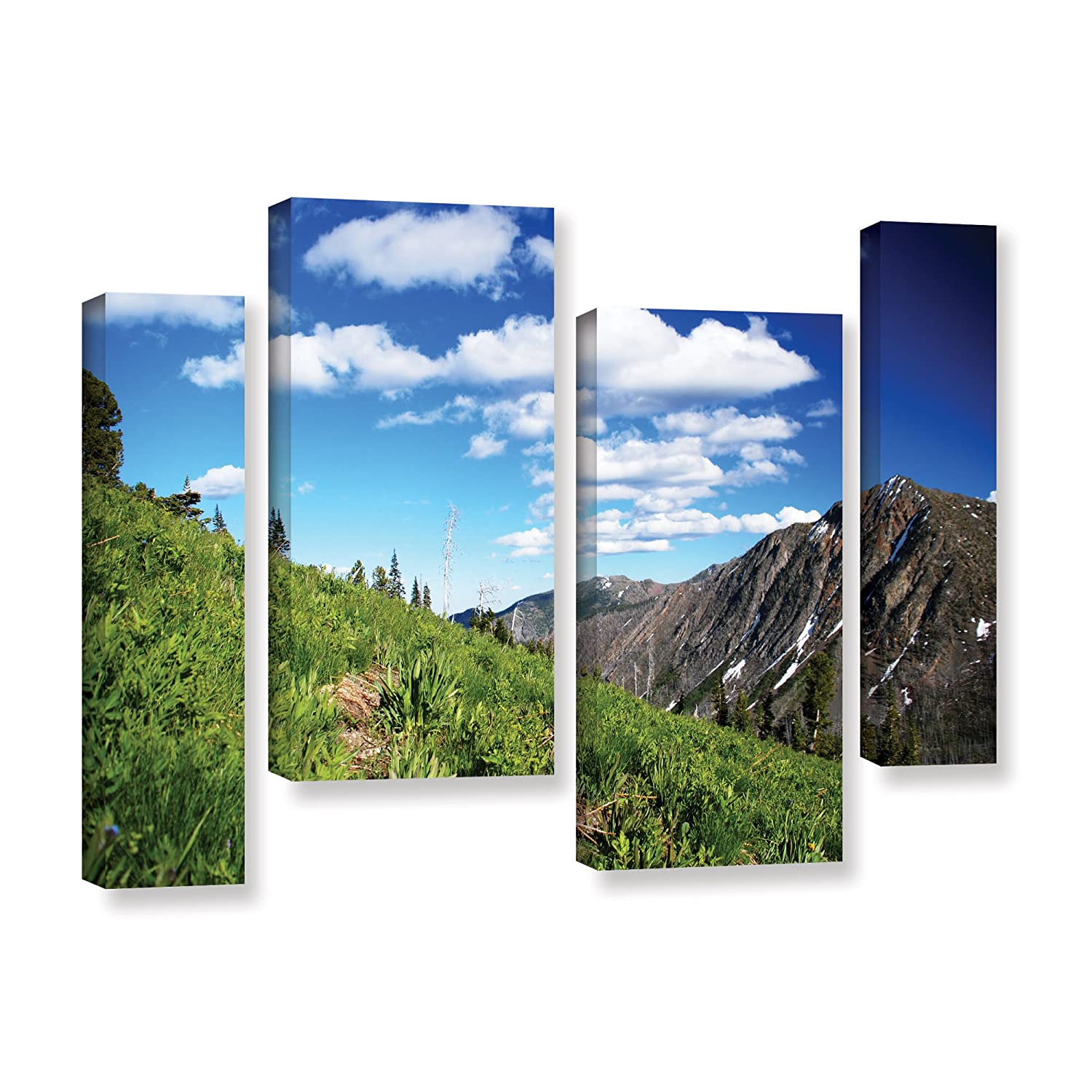 Artwall Dan Wilson S Mountain Meadow 4 Piece Gallery Wrapped Canvas Staggered Set 36x54 Amazon In Home Kitchen