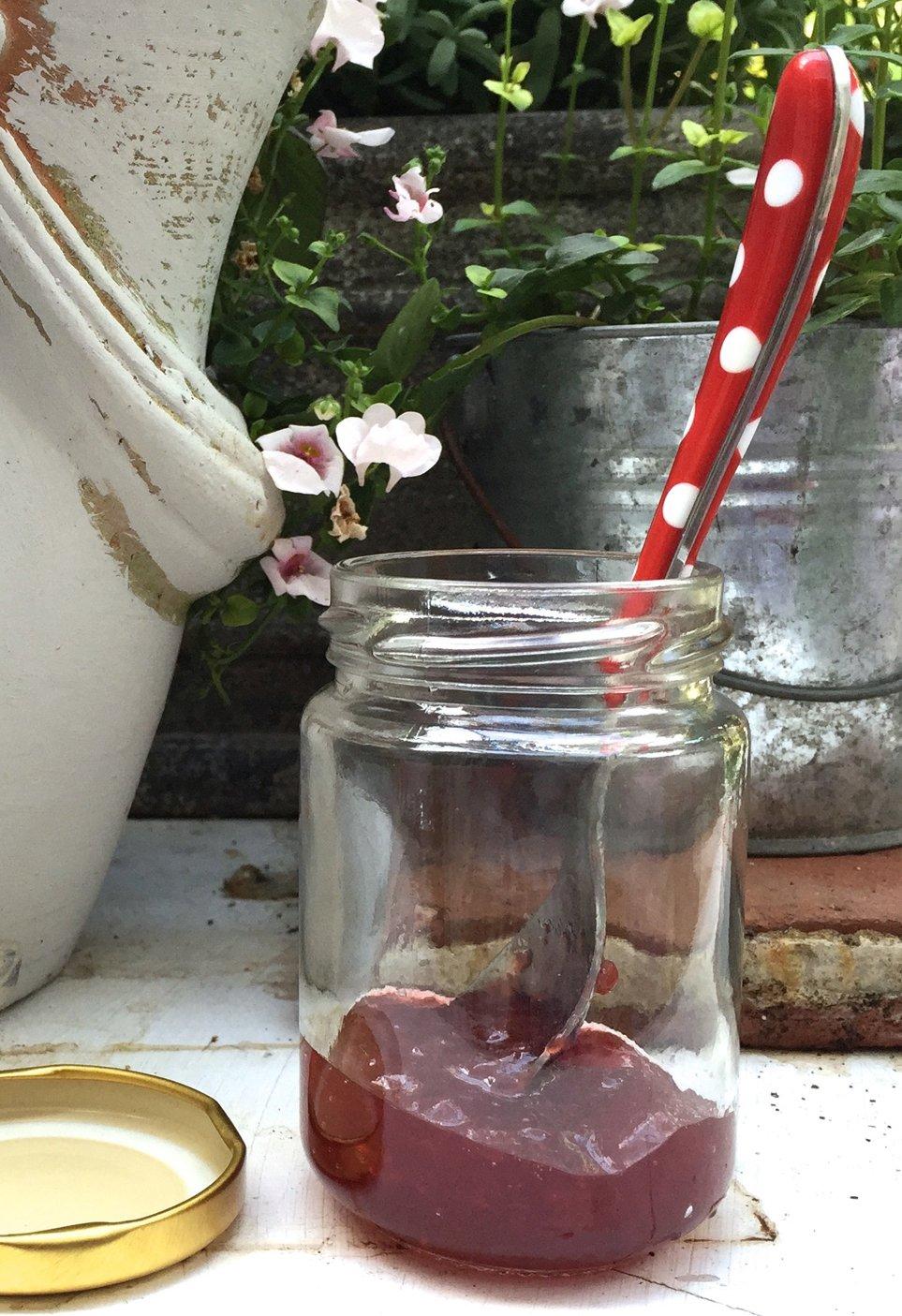 con tapa de rosca, 156 ml color dorado Lote de 24 tarros de mermelada transparentes Nutleys