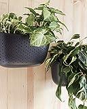 WallyGro Eco Vertical Garden Wall Planter 4 Pack