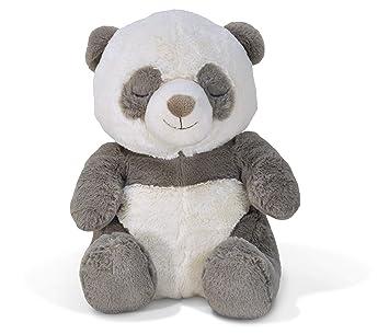 Amazon.com: Cloud b Teddy Bear (renovado): Baby