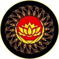 Awakening Chakras PRO