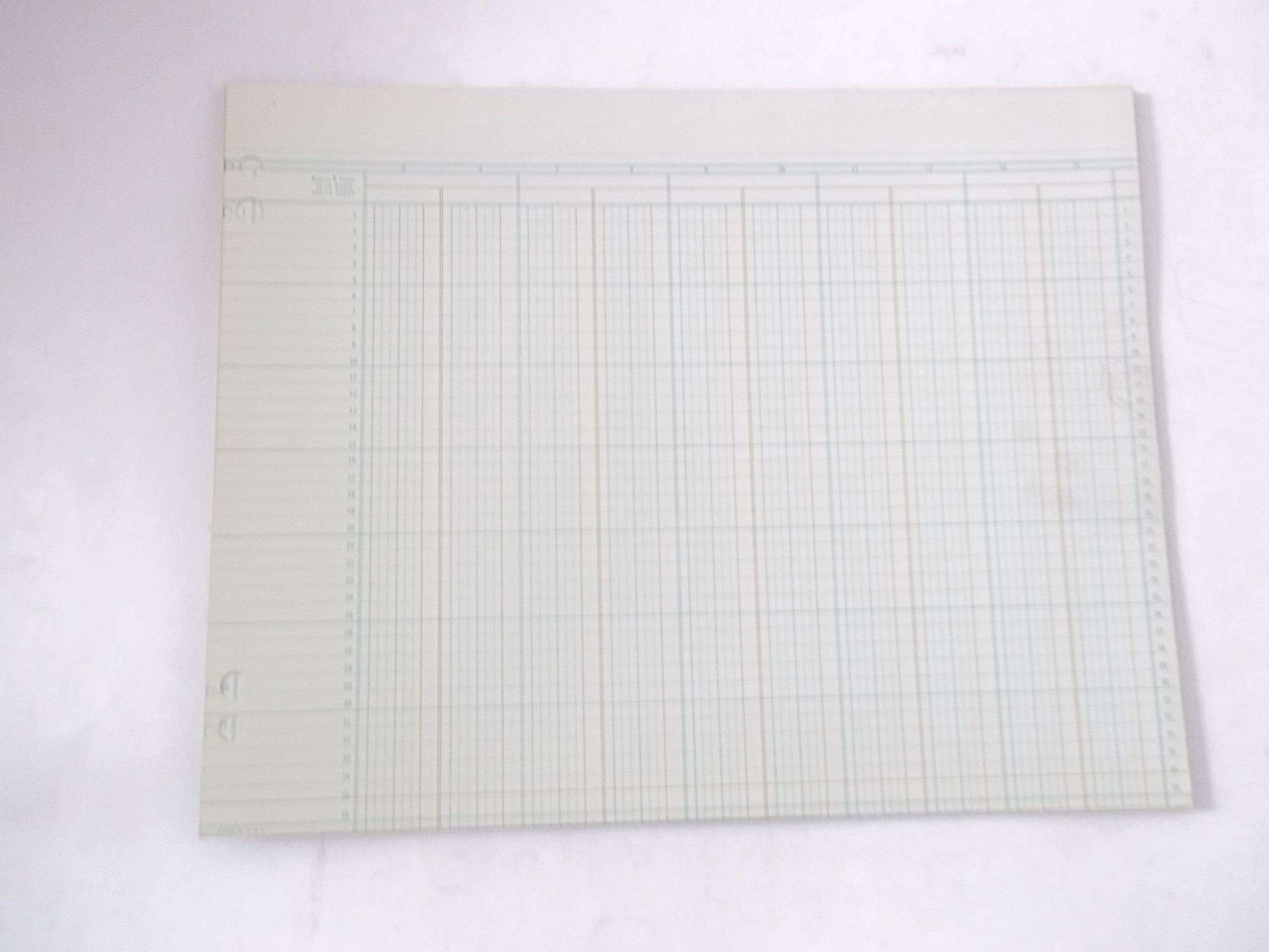 Boorum Pease G22-14 20 sheets Green Columnar Sheets 11'' x 14'' 14 Column