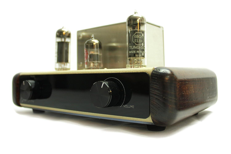 Amazon.com: xtonebox oro 2084 amplificador de tubo música ...