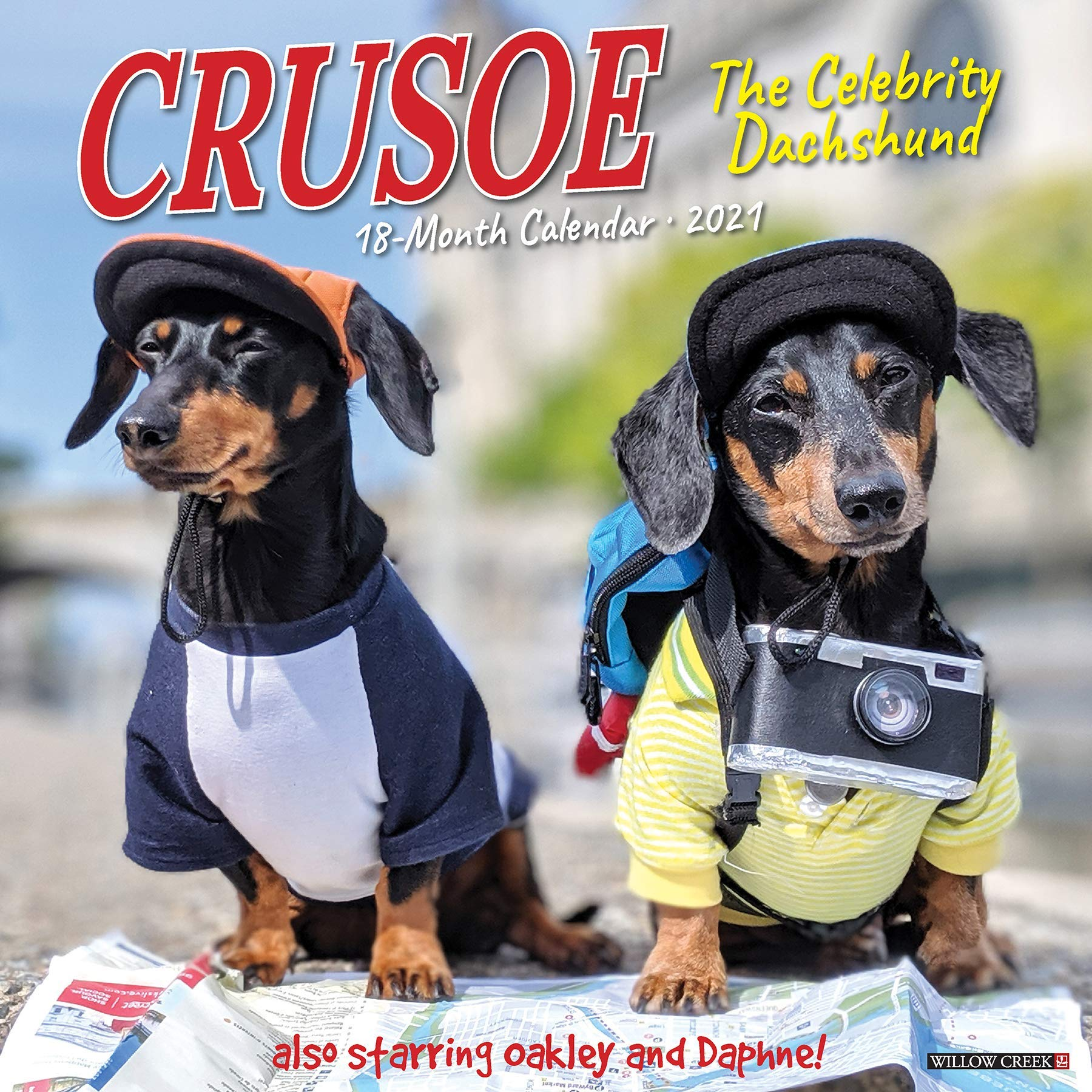 Whelping Calendar 2021 Crusoe the Celebrity Dachshund 2021 Wall Calendar (Dog Breed