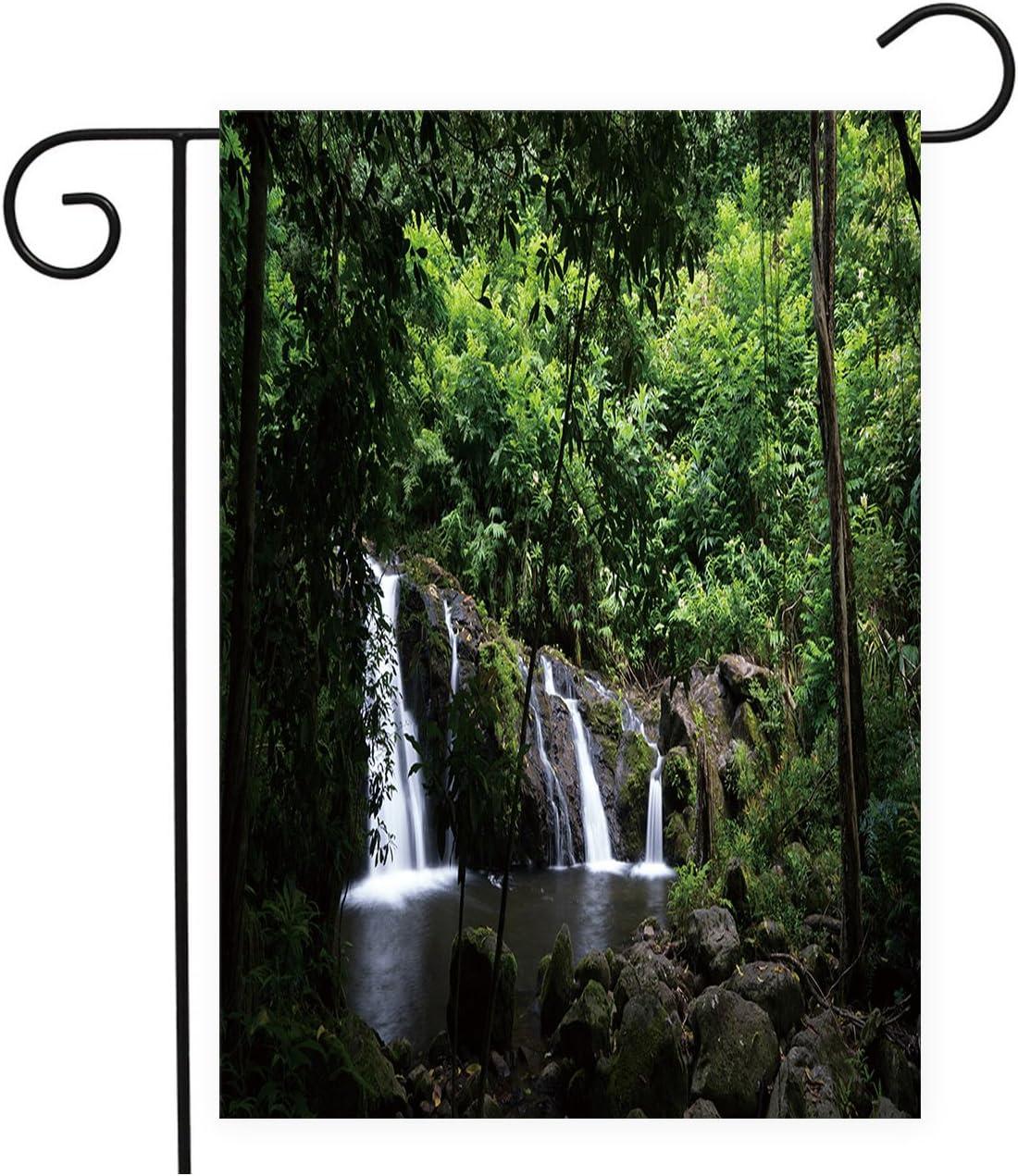 Mystic Forest - Banderas de cascada para jardín, decoración de casa, mini patio, 100% poliéster: Amazon.es: Jardín