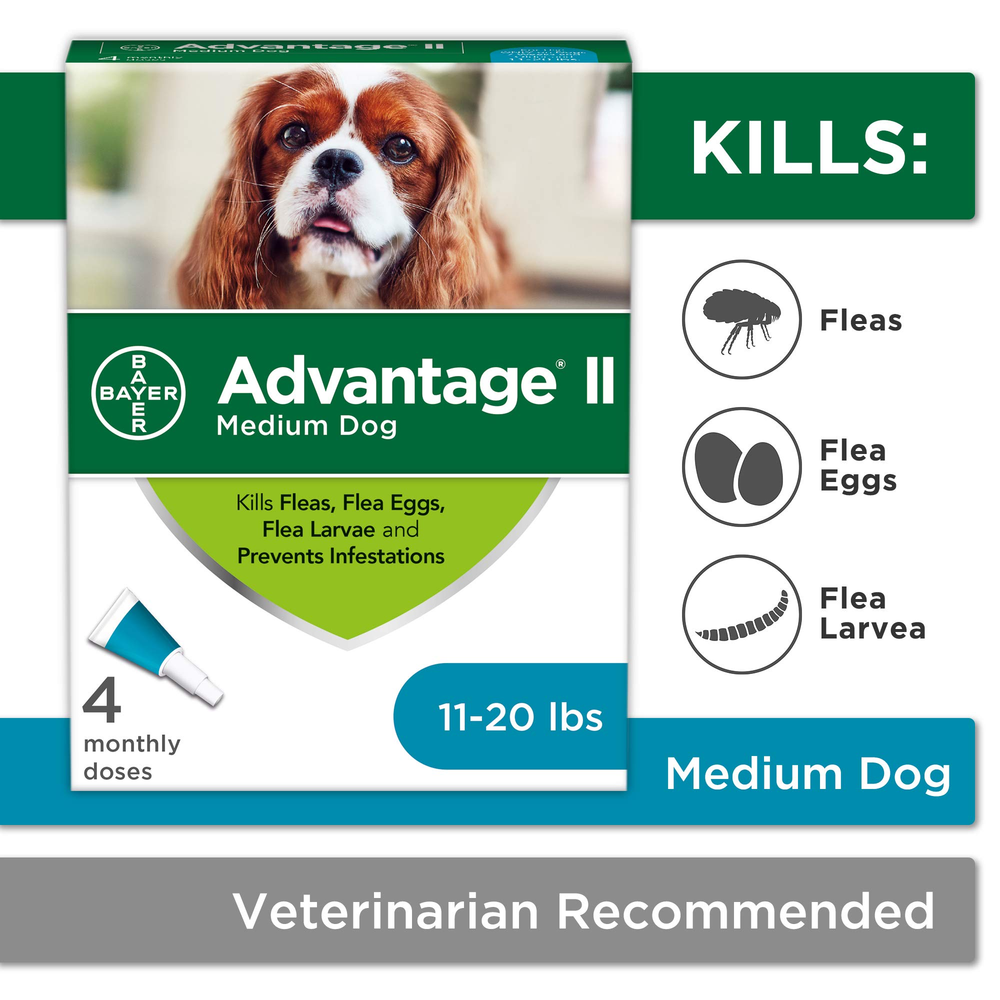 Flea and Lice Treatment for Dogs, 11-20 lb, 4 doses, Advantage II by Bayer Animal Health
